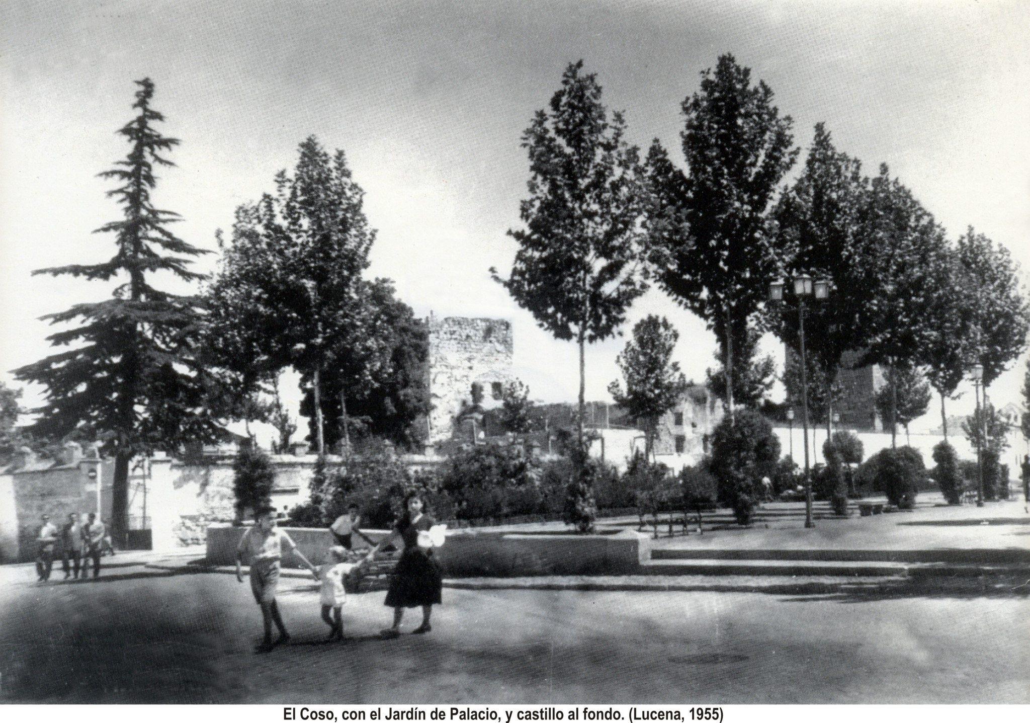 El Coso. 1955