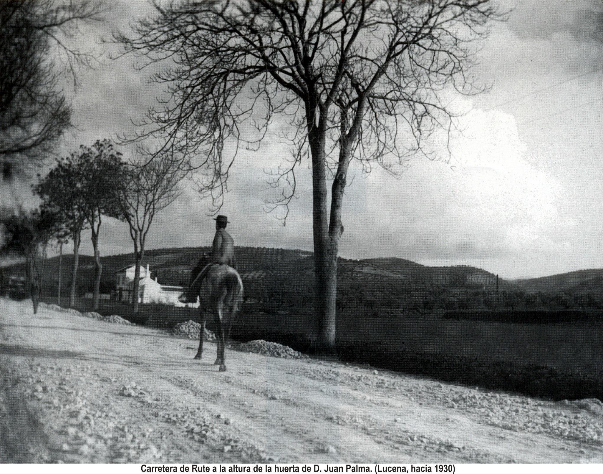 Carretera de Rute. Huerta de D. Juan de Palma. 1930